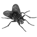 Fly-PNG-4-min